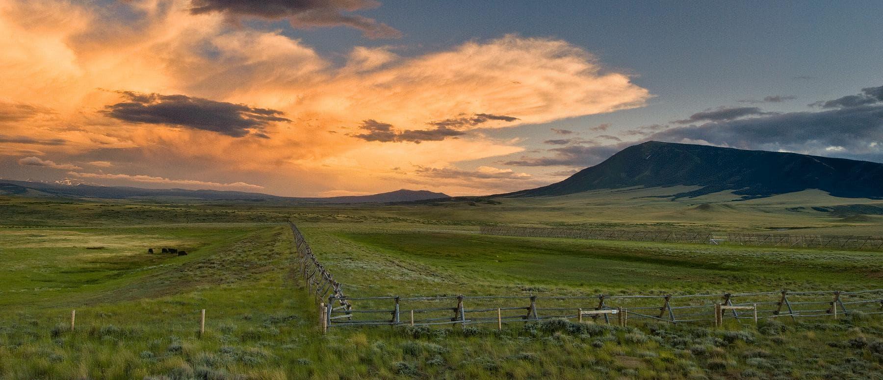 field outside laramie wyoming