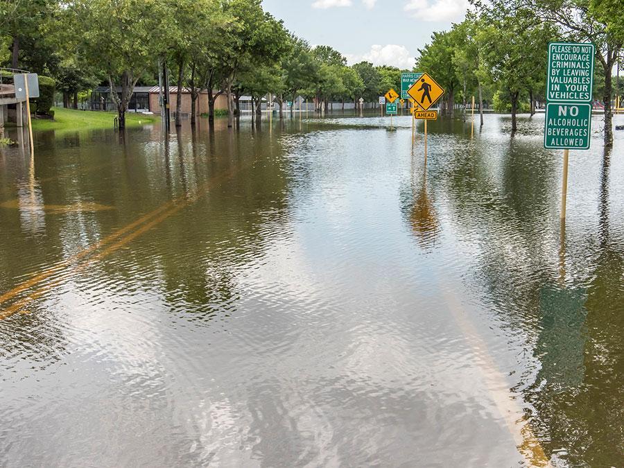TX Flooding Delve