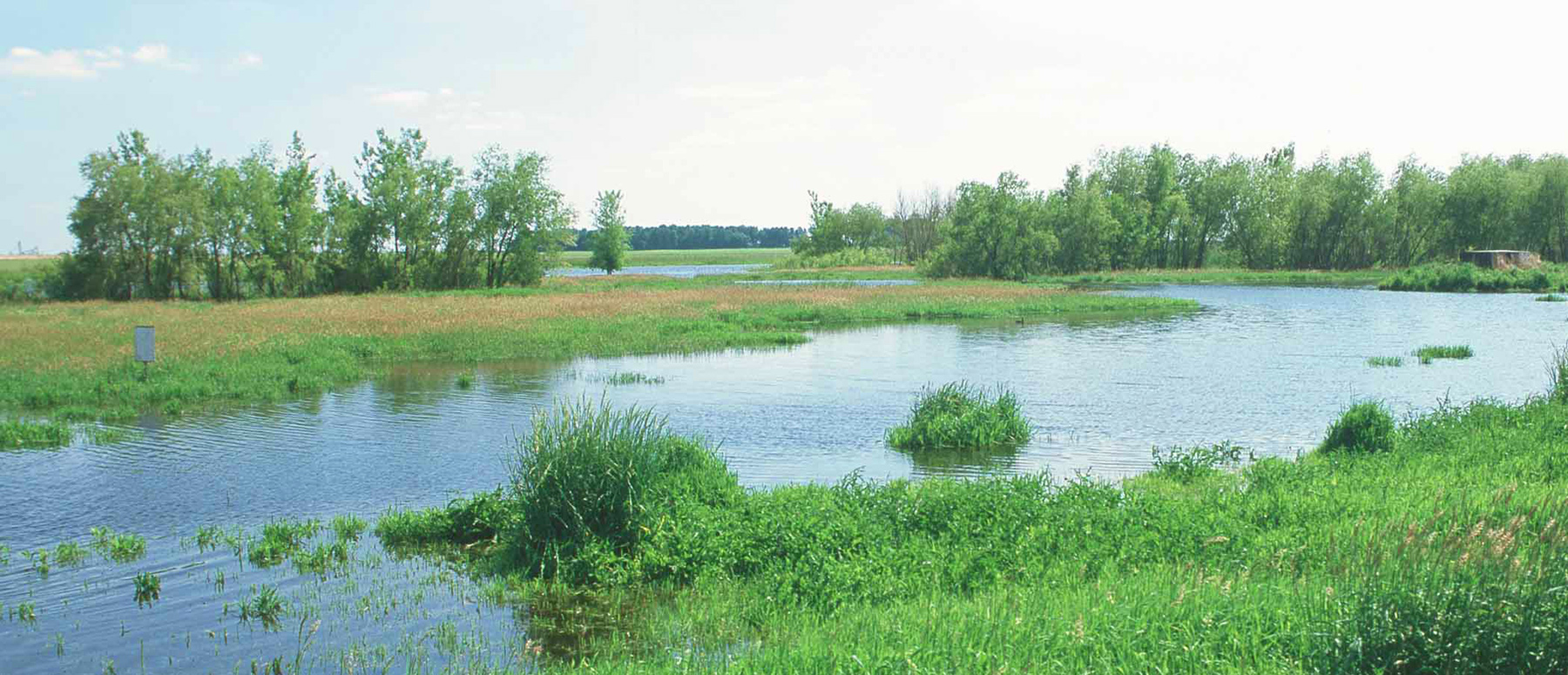 Platte-River-Basin_Water-Planning-Feasibility_Hero